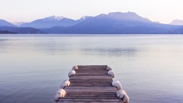 Banner image of a dock overlooking mountains